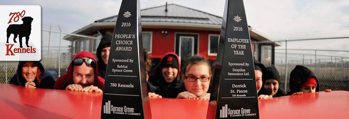 Edmonton dog trainers win People's Choice Award at 780 Kennels.
