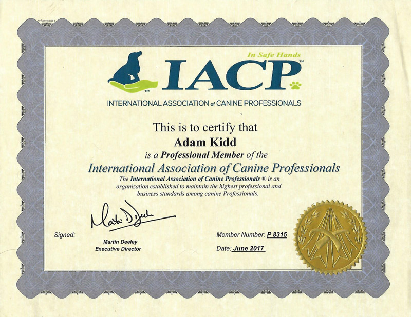 International Association of Canine Professionals certificate.