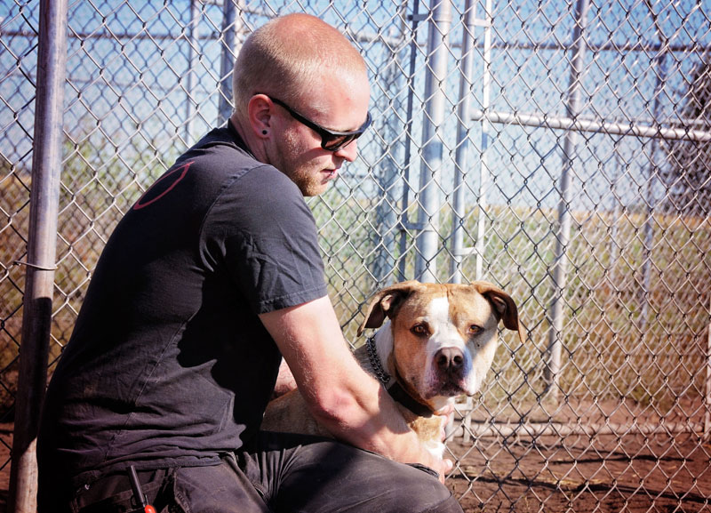 Pit Bull training with his handler.
