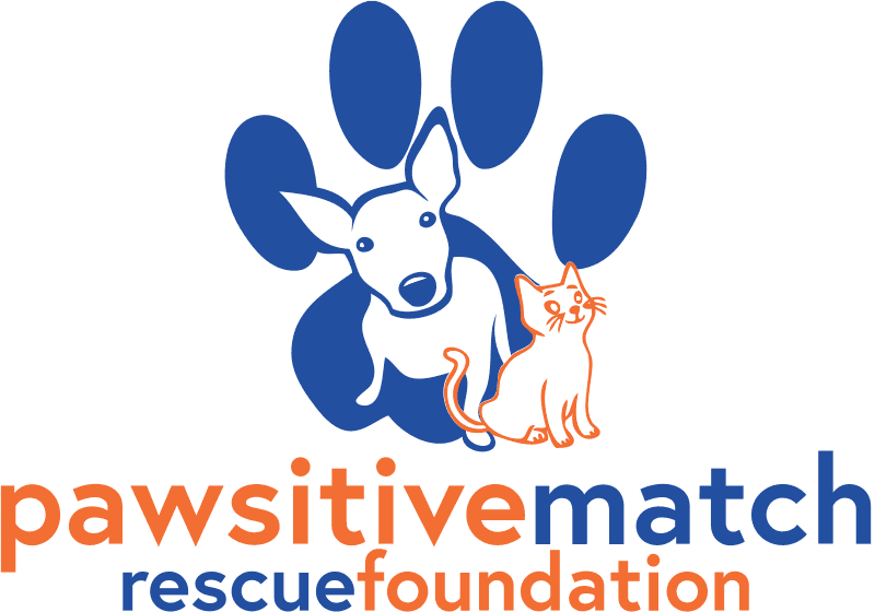 Open Pawsitive Match Rescue Foundation letter of reference for 780 Kennels.